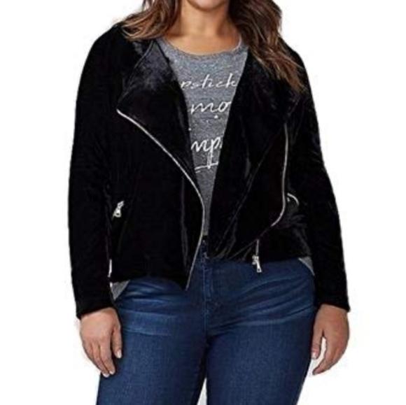 Lane Bryant Jackets & Blazers - Velvet Moto Jacket